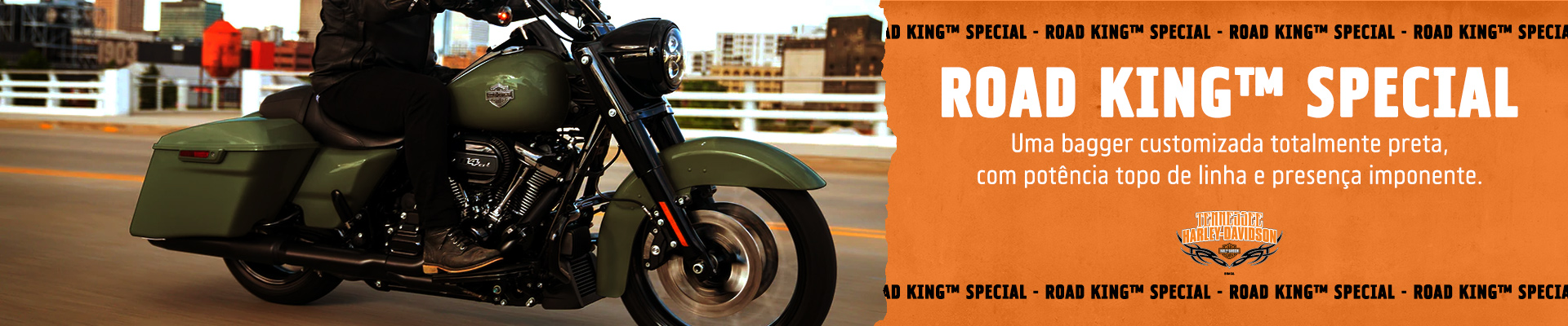 Banner Road King® Special